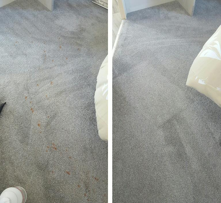 Bedroom Carpet - Vomit Stain Removal