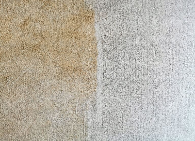 Muddy Carpet Cleaning